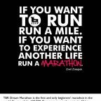 TBR Dream Marathon 2013: Reservation Opens Sept. 1, 2012